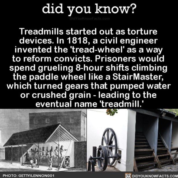 Still think it's a torture device TBH  #interesting #treadmill #workout Download… – Did You Know?