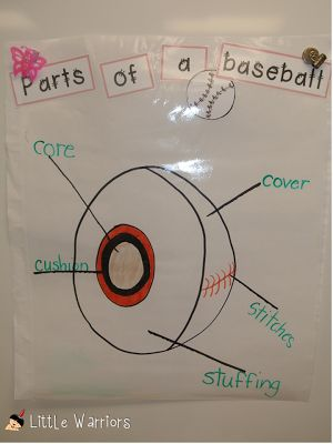 Baseball Unit~Days 3-Parts of a baseball