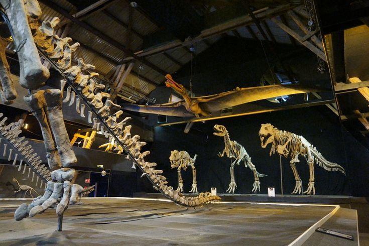 A World of Dinosaurs in Kalmar in Zweden is een bijzonder indrukwekkende verzameling van dino's. Een must see voor elke dino-liefhebber.