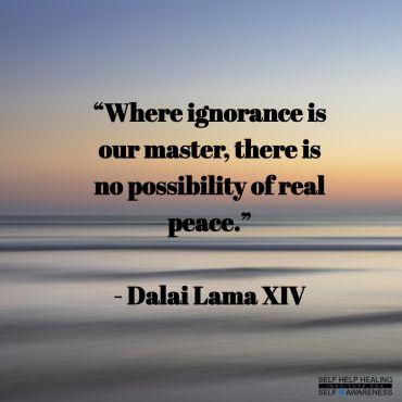 My Quotes by the Dalai lama No.5