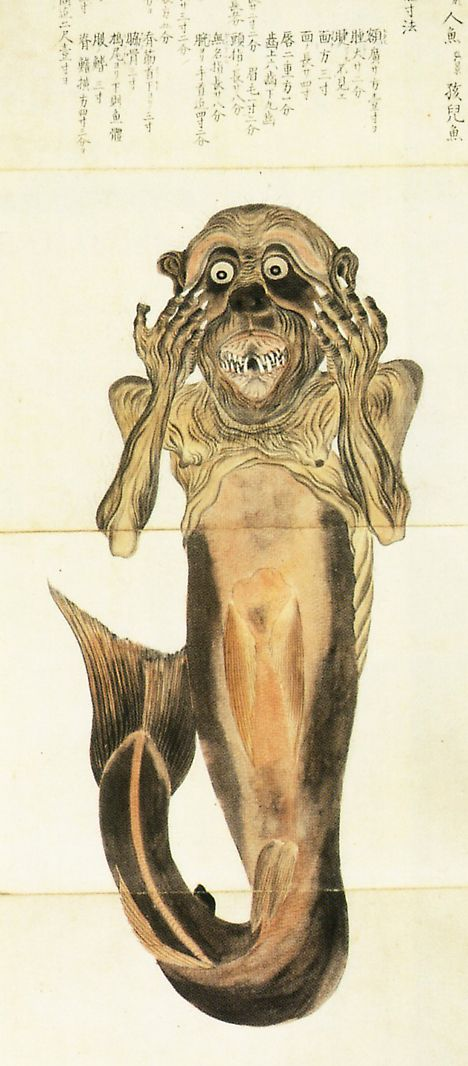 "Noted natural historian Baien Mouri (1798-1851), a prolific illustrator known for his colorful depictions of plants and animals, included two sketches of a mermaid in his 1835 book Baien Gyofu (""Baien Book of Fish"")."