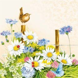 Serwetka papierowa - Spring Feeling Cream - 00206