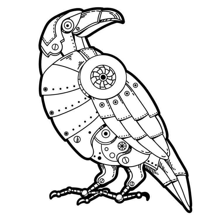 131 best coloring birds of prey images on pinterest for Birds of prey coloring pages