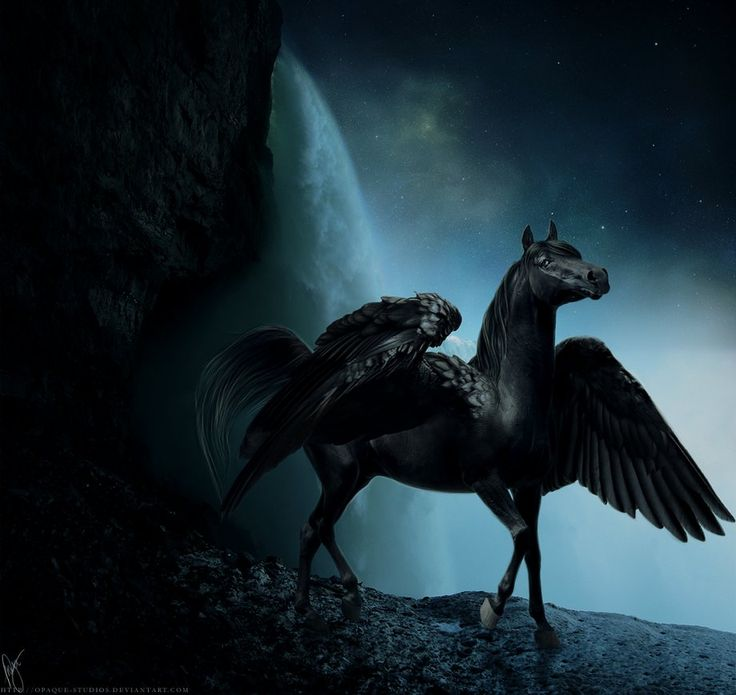 .....ride the winged horse into safety....
