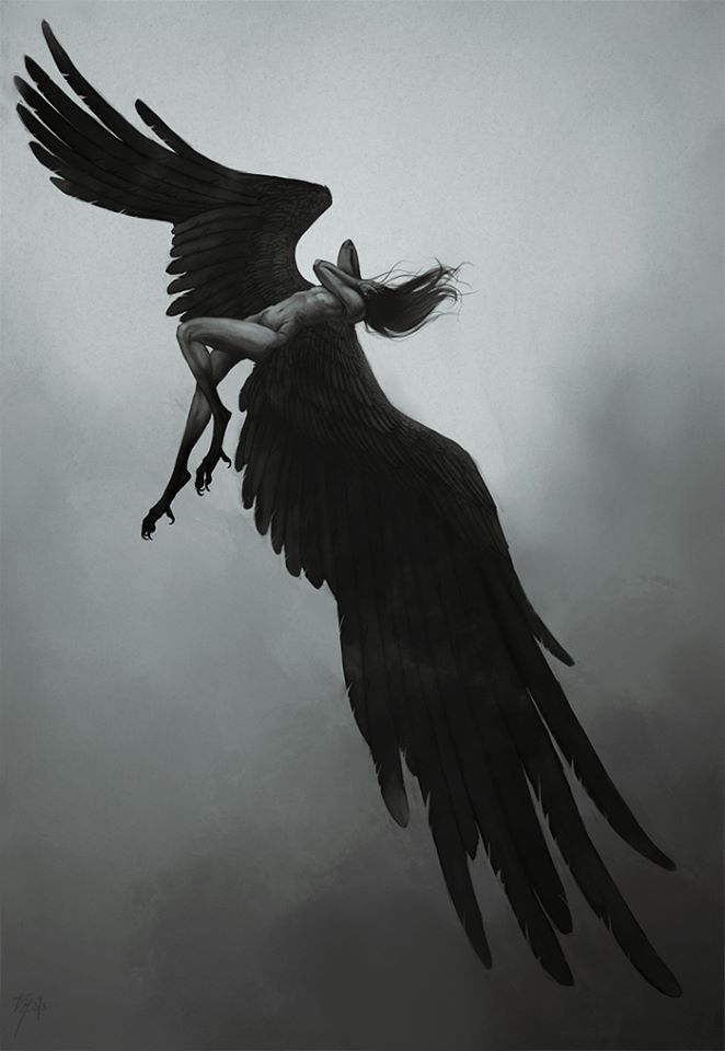 I Will Never Fall For I Have Risen From The Ashes And Transformed Into The Mastery Of The Phoenix I Will Soar ......scorpio