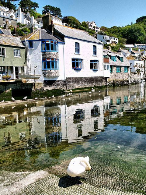Polperro Cornwall #travel, #leisure, #trips, #vacations, https://facebook.com/apps/application.php?id=106186096099420