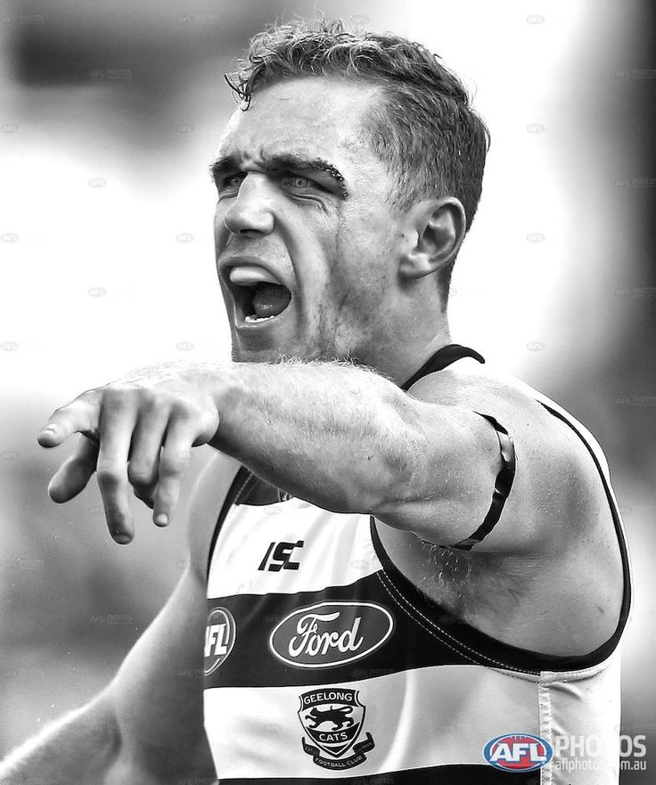 Round 3 - Joel Selwood of the Cats
