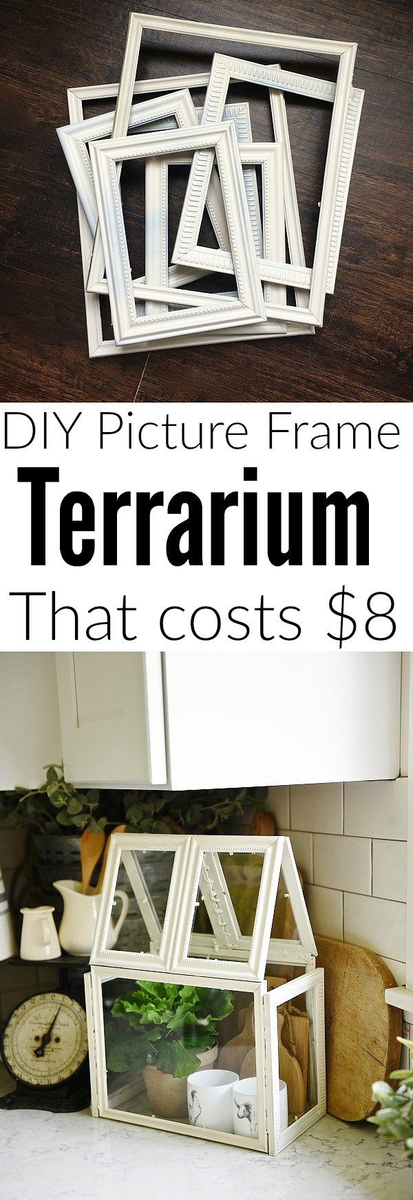 What a cute little Terrarium! Even though it is not fully enclosed it is a great bargain DIY!