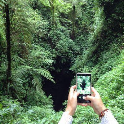 バリ倶楽部さすけのブログ: バリ島登山日記。第3回目レスン山