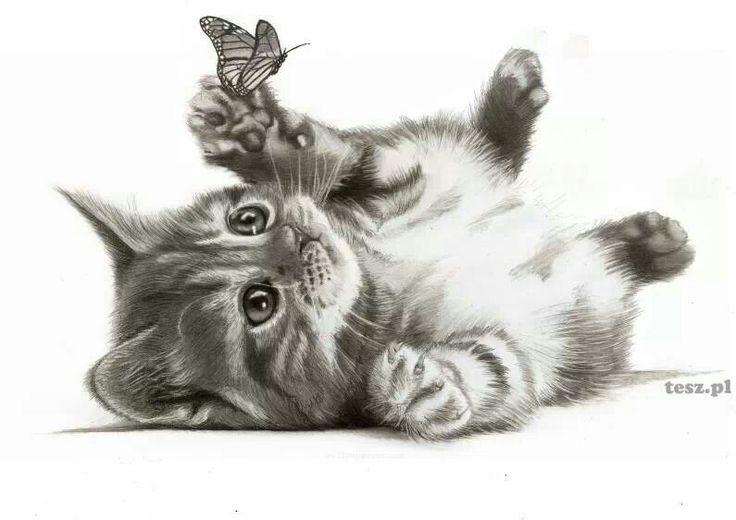 Coloring Pages Of Sleeping Animals : Sleeping kitten by art it art.deviantart.com on @deviantart