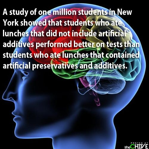 the brainThe Human Brain Facts205, Amazing Body, Fun Brain, Amazing Facts, Funny Images, Brain Produce, Fast Food, Brain Consistency, Human Facts