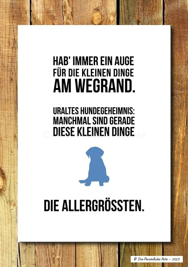 Wanddeko   Druck/Wandbild/Print: Lebenskluges Von Deinem Hund   Ein  Designerstück Von