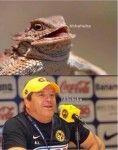 Los mejores memes que expresan la humillación que León le dio al América en la Final