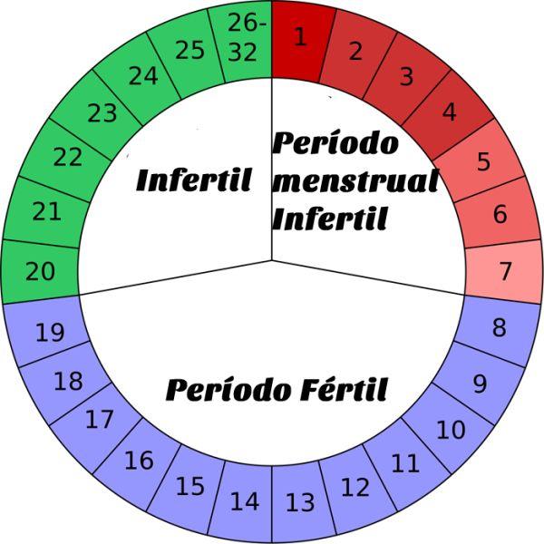 Calcular período fértil é muito simples. Leia nossas instruções para aprender de uma vez por todas usar a calculadora fértil.