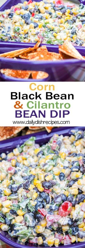 Potluck-Corn-Black-Bean-and-Cilantro-Salsa-Dip-for…
