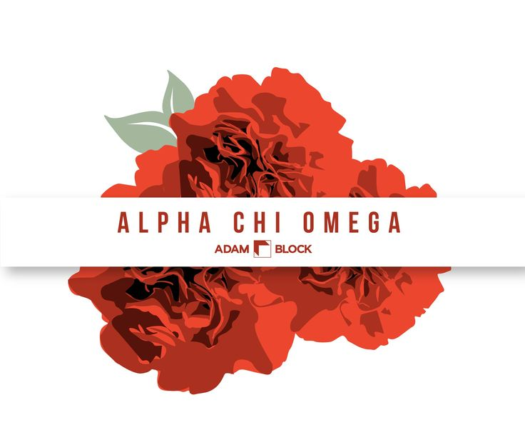 Looking for custom Alpha Chi Omega shirts with endless design options? Adam Block makes it easy! • www.adamblockdesign.com