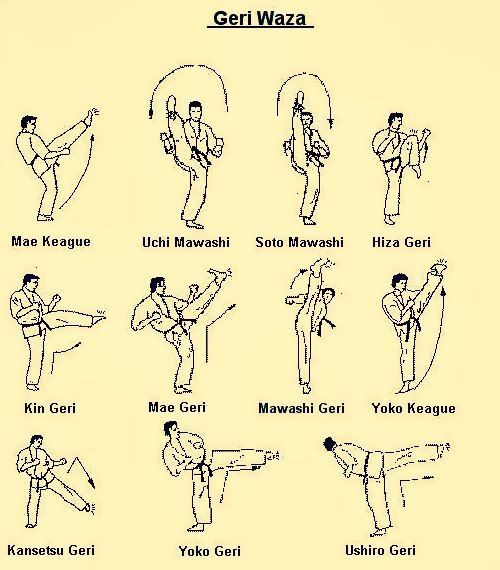 Krate diagram of fatal point of body   alraisi   Karate