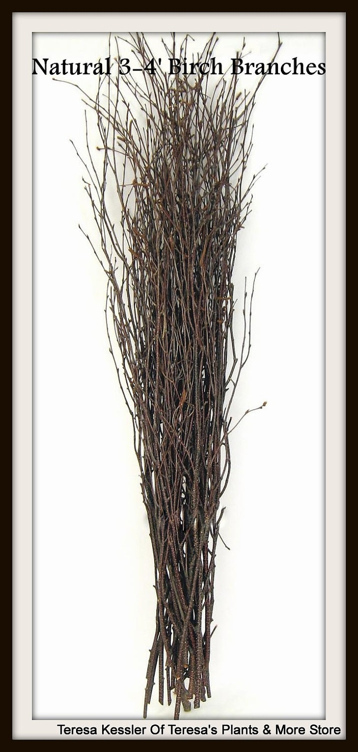 25 natural birch tree branches wedding table decor birch for Tree twigs decoration
