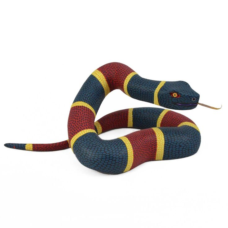 1000+ Images About Snake Art & Things On Pinterest