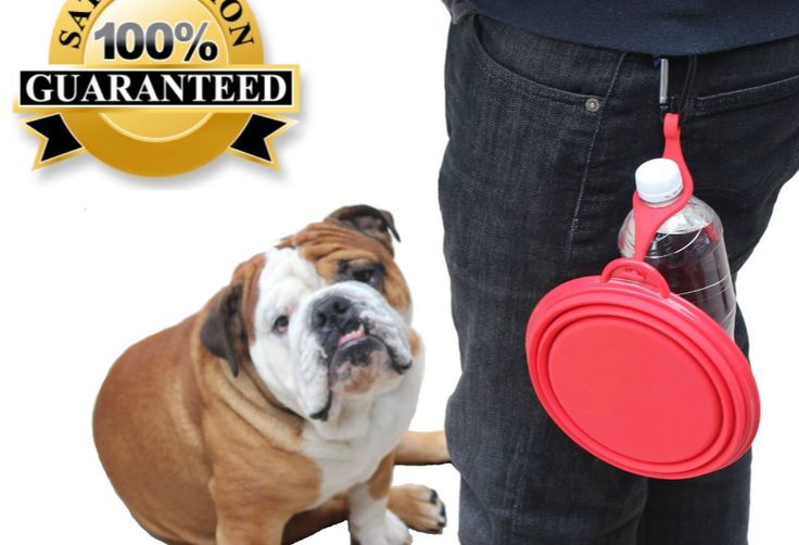 travel dog bowl - clip and carabiner available from Northern-Outback.com