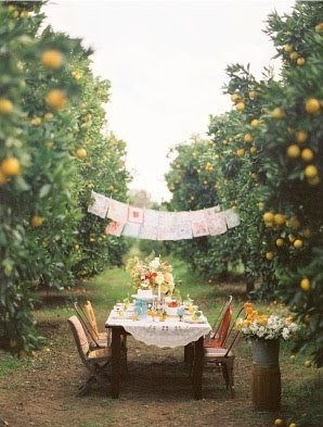 orchard: Outdoor Dinners, Birthday Banners, Birthday Parties, Orange Trees, Dinners Parties, Orchards Soir, Orange Orchards, Orchards Parties, Mimosas Brunch