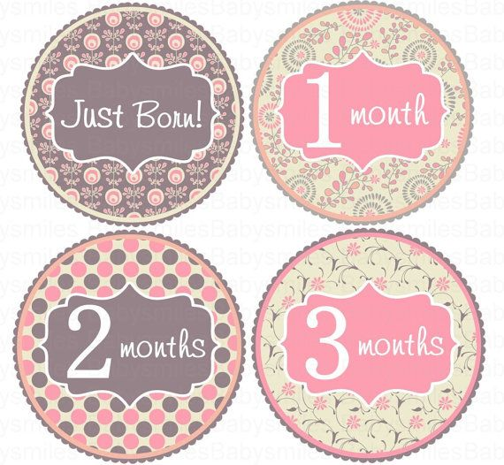 Monthly Baby Stickers Baby Month Stickers Etsy By