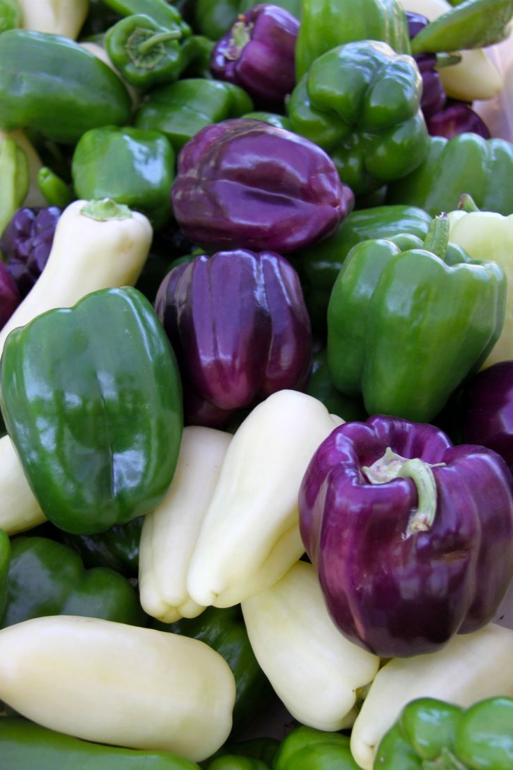 I want to find white and purple bell peppers!
