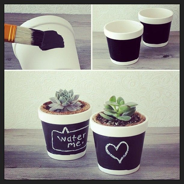 Quick and easy Tuesday DIY: Chalkboard Flower Pot.  #chalkboard #flower #pot #diy #diyproject #tuesday #easy #cactus #paint #brush #instadaily #instapicture #like #love