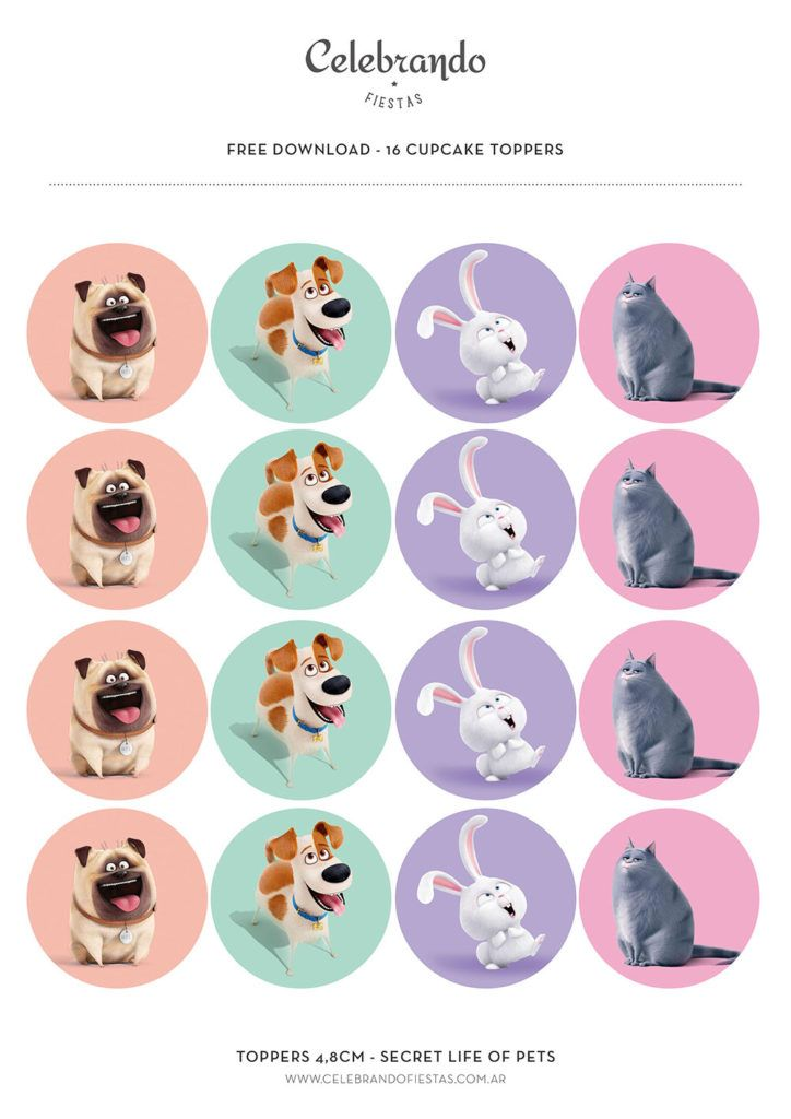 La vida secreta de tus mascotas Toppers - Secret life of pets