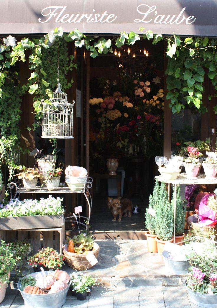 les 25 meilleures id es de la cat gorie magasins de fleurs. Black Bedroom Furniture Sets. Home Design Ideas