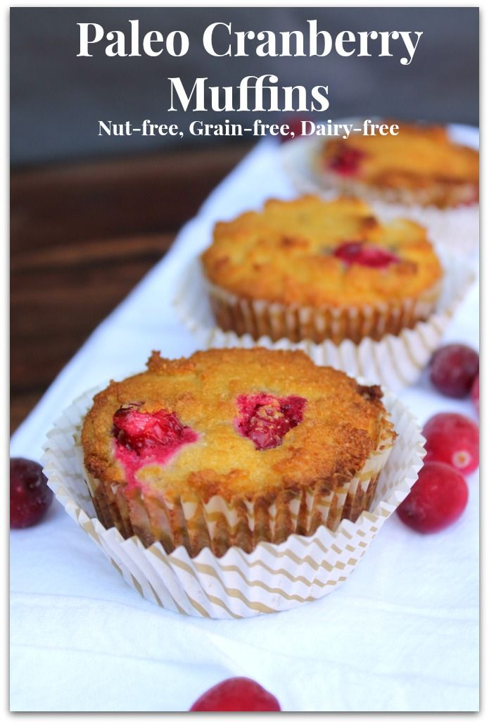 Cranberry Paleo Muffins (Nut-free) - Healy Eats Real #paleomuffins #realfood #paleo #muffins #paleo desserts