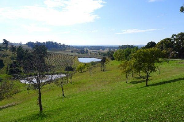 Tallavera Grove - Retreating to the Hunter Valley