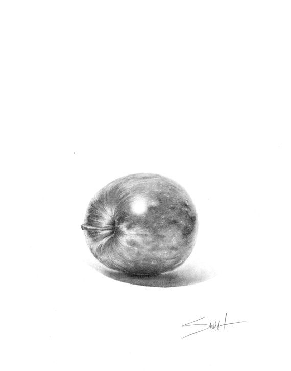apple still life pencil drawing archival paper print signed by artist eric sweet