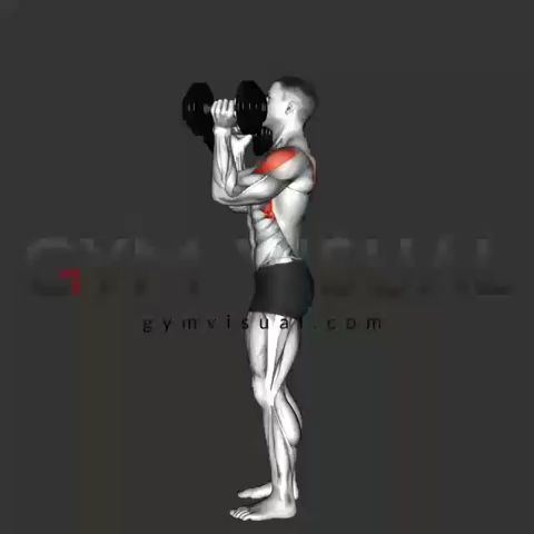 Musculation à Domicile : Méthode Poids de Corps et Haltère 💪 (programmes, exercices, nutrition)