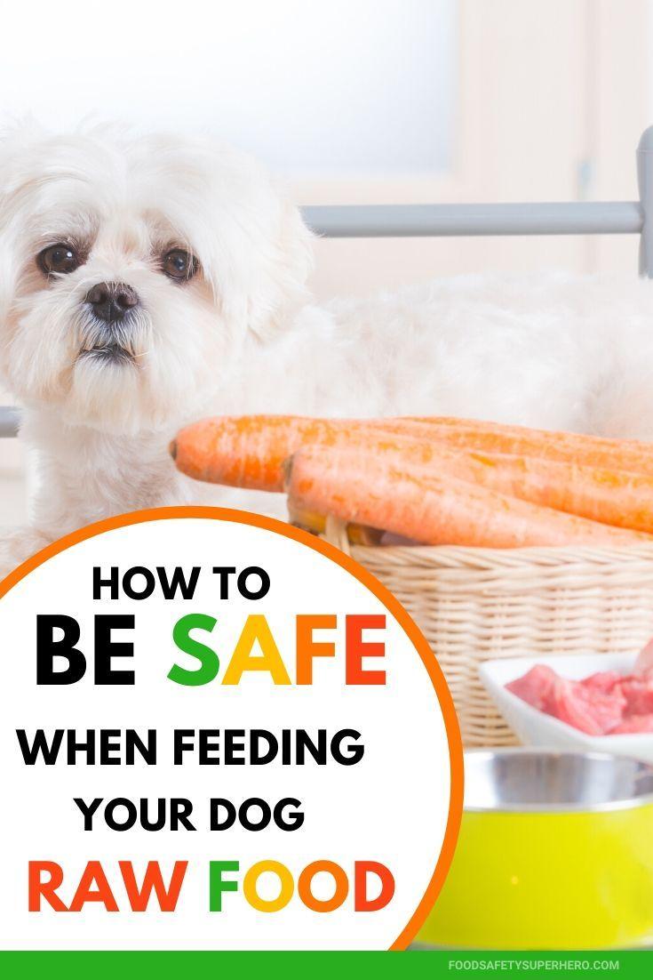 Food Safety Superhero Fighting Food Borne Illness And Food