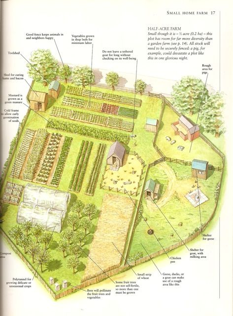 A Small Farm- a page from my favorite book, Country Life: A Handbook for Realists and Dreamers by Paul Heiney