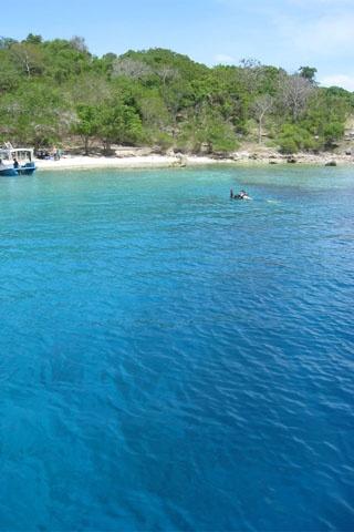 Menjangan Island – Bali « Private Tour Driver Bali Island