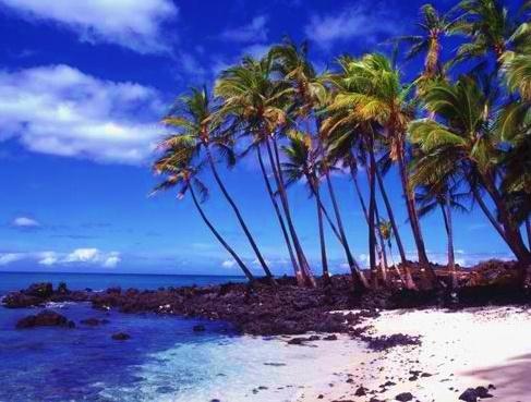 Waikoloa Beach.  The BIG island Hawaii.  HEAVEN!