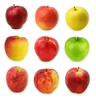 These are the apple varieties that grow in Dallas Ft. Worth Area from an excellent web site that lists size, type flavor, hardiness, etc.