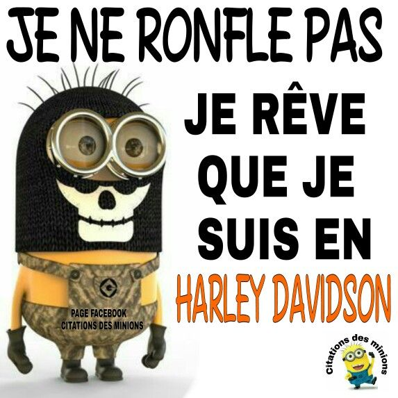 Citations des minions                                                       …