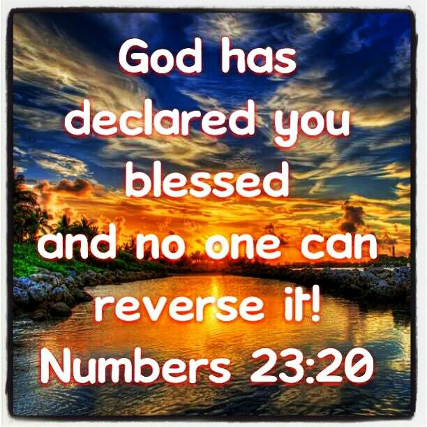 No one can curse what God has blessed! | God's Powerful ...