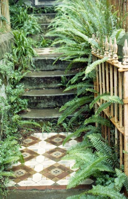 Tile and fern. #Gardening #Inspiration