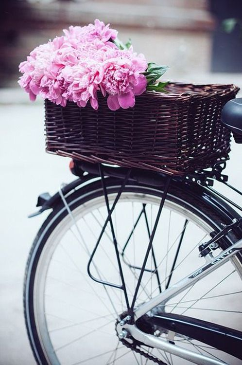 Black bike with gorgeous pink flowers in a basket. #bicycle