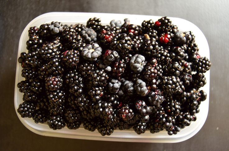 blackberries <3