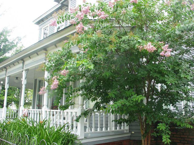 House vacation rental in Valdosta, GA, USA from VRBO.com! #vacation #rental #travel #vrbo