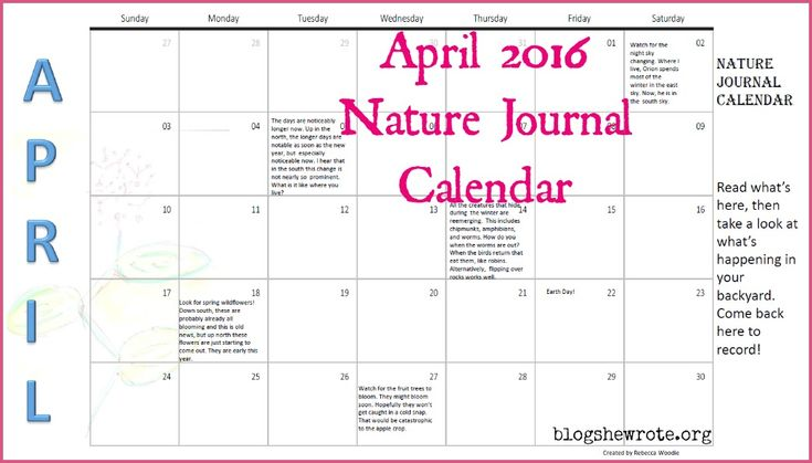 Use this calendar to get ideas for observing the world around you in ...