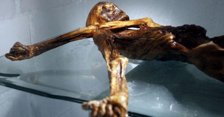 O corpo mumificado de Otzi, o homem de Similaun descoberto em 1991 em um glaciar entre Áustria e Itália, conservou glóbulos vermelhos durante mais de 5.000 anos, segundo um estudo publicado na Royal Society. A múmia foi muito bem conservada pelo glaciar e continha tecidos intactos ao ser descoberta, inclusive elementos do sistema nervoso