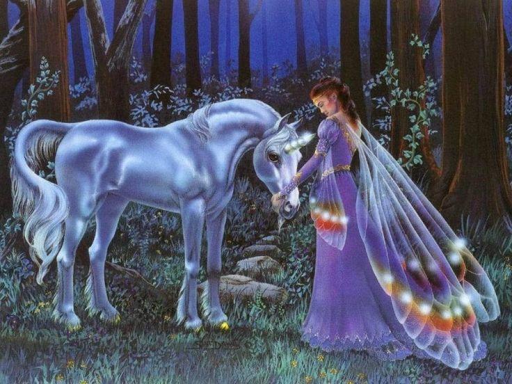 Unicorn-and-Fairy