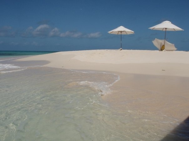 One of my favourite places on the Great Barrier Reef..... Vlassoff Cay, out from Cairns