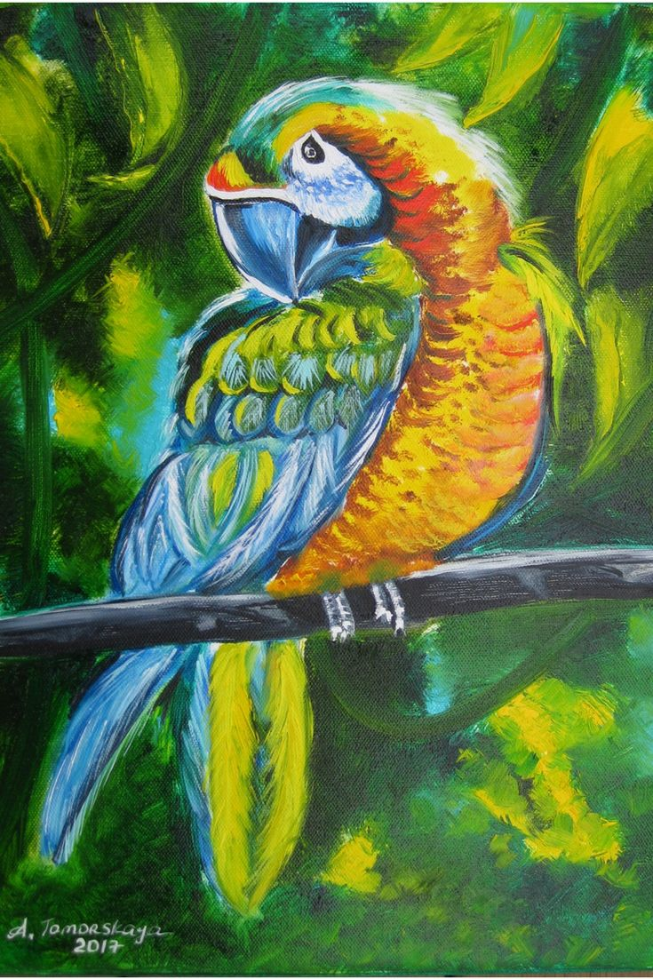 """CAD120 Blue-and-yellow macaw. Original Oil Panting on Canvas. 16"""" x 12"""". 40 x 30 cm. Unframed. BY ORDER ONLY. #oilpainting #oiloncanvas #fineart #originalart #originalartwork #birds"""